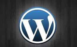 如何在WordPress文章页隐藏作者信息